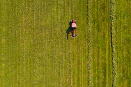 Red tractor windrowing hay, top down aerial view, agriculture and farming