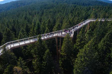 Tree canopy walk, treetop walkway, footbridge through the forest, adventure in nature, escaping the city on Rogla, Pohorja mountain, Slovenia Stockfoto