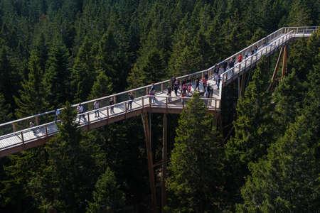 Tree canopy walk, treetop walkway, footbridge through the forest, adventure in nature, escaping the city on Rogla, Pohorja mountain, Slovenia Archivio Fotografico