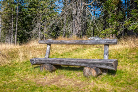 Wooden bench in the woods, sunnz meadow and trees in background, solitude, tranquilitz and peace in nature