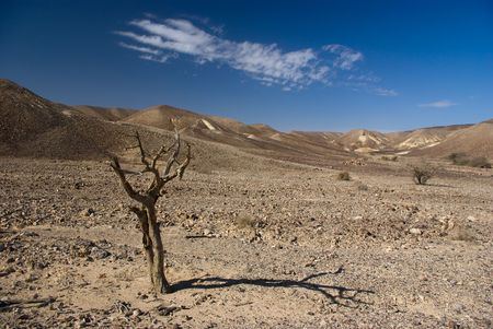 Desert View - photo from the negev - israeli desert