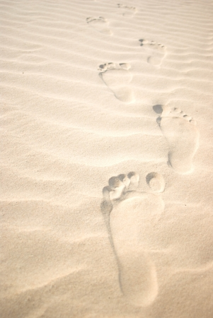 footprints on sand dune photo