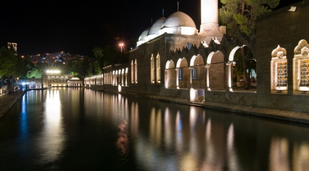 Holy carp pool In Sanliurfa, Turkey  it is believed that this is the place where Abraham was thrown into the fire by King Nimrod