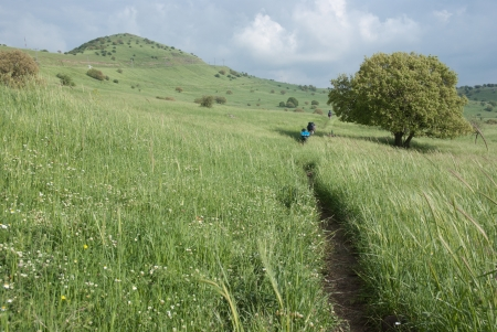 golan: the Golan national trail in northern Israel