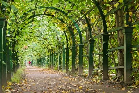 peterhof: a garden tunnel in Peterhof palace, St Petersburg, Russia
