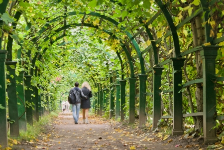 a couple walking in a garden tunnel photo