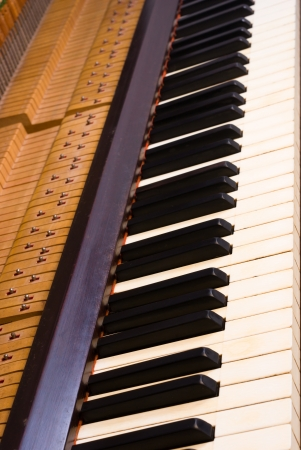 The interior of a vintage piano photo