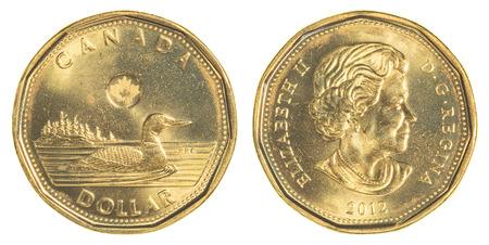 dollaro: TORONTO, CANADA - 20 febbraio 2015: 1 moneta del dollaro canadese
