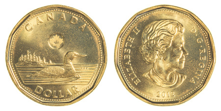 canadian cash: TORONTO, CANADA - FEBRUARY 20, 2015: 1 canadian dollar coin