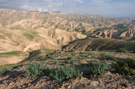 west bank: view of the Judean desert in winter. west bank, Israel