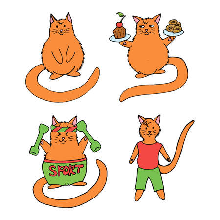 Positive sports cat. Healthy lifestyle and diet.