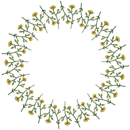 Round frame with vertical flowers buttercups on white background. Isolated frame with flowers for your design.