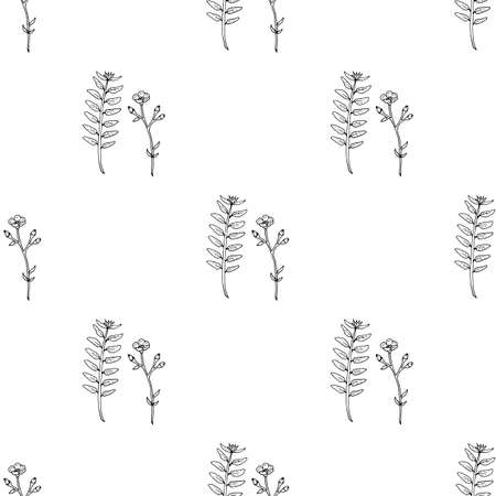 Seamless pattern with black-and-white buttercups and herbs for fabric, textile, clothes, tablecloth, post cards and other things. Endless background for your design. Vector image.