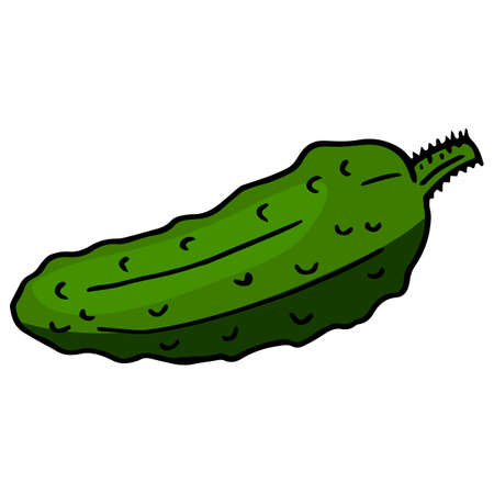 Cute cucumber on white background. Vector image.
