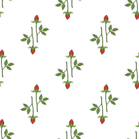 Seamless pattern with red rose buds on white background. Vector image.