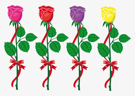 Four color  roses with  red bow and ribbon Vector