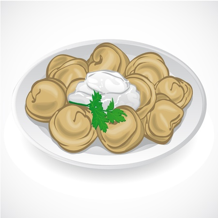 Dumplings with greens on a plate  Vector