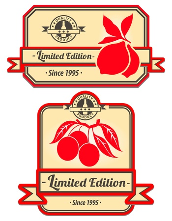 Set of decorative vintage labels Vector