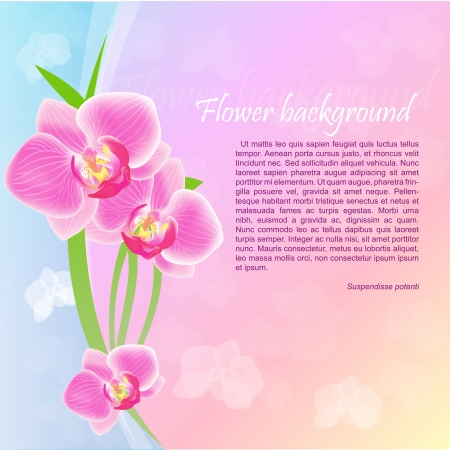 Grunge floral background with orchids Vector