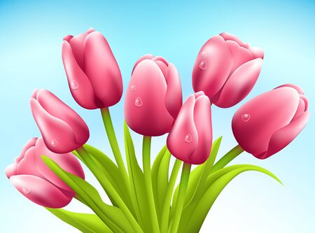 Bunch of tulips on white background Stock Photo - 18159591