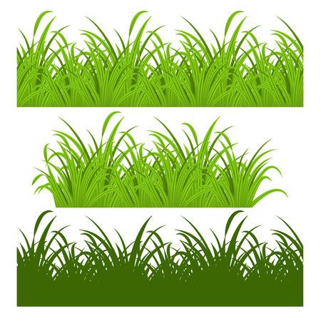L�nea perfecta y conjunto de la hierba verde fresca Vectores