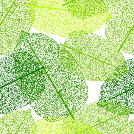 venation: Leaf skeletons green seamless vector background. Web pattern Illustration
