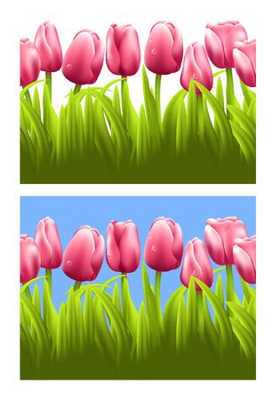 horizontal: Horizontal seamless background with tulips.