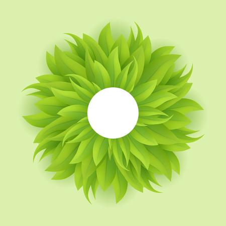 sedge: Green grass circle, vector