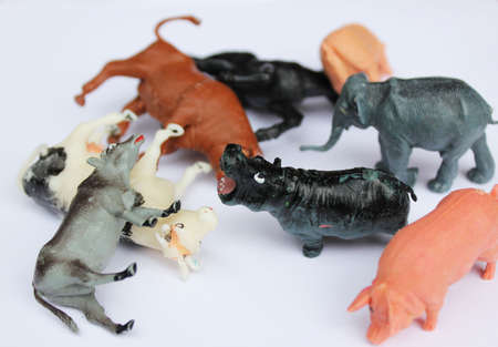 toys animals photo