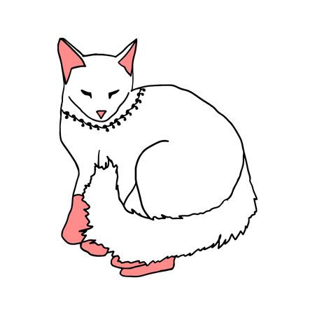 white cat sleeping on white background