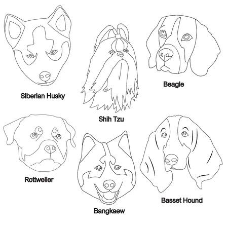 Perro blanco y negro Conjunto de la cara: Husky siberiano, Shih Tzu, Beagle, Rottweiler, Bangkaew, ilustración vectorial Basset Hound