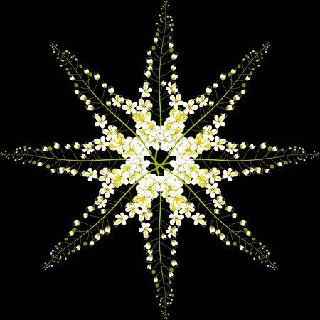 fistula: Cassia Fistula - Gloden Shower Flower Vector Illustration Stock Photo