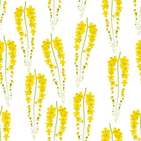 cassia: Cassia Fistula - Gloden Shower Flower Vector Illustration Stock Photo