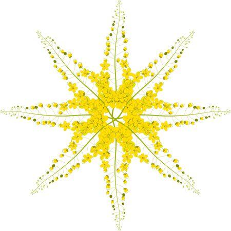 gloden: Cassia Fistula - Gloden Shower Flower Vector Illustration Stock Photo