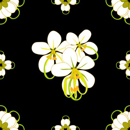 gloden: Cassia Fistula - Gloden Shower Flower Vector Illustration Illustration