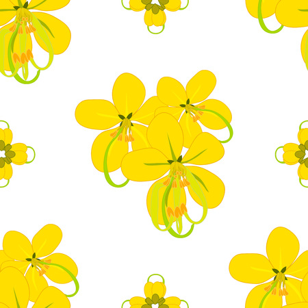 fistula: Cassia Fistula - Gloden Shower Flower Vector Illustration Illustration
