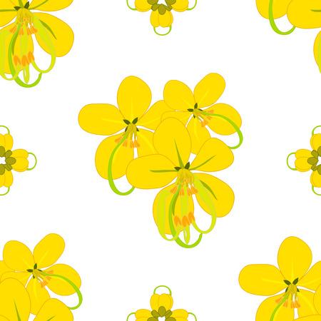 Cassia Fistula - Gloden Shower Flower Vector Illustration Illustration