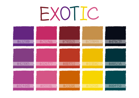 color tone: Exotic Color Tone with Code Vector Illustration Illustration