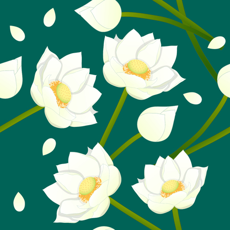 White Indian lotus on Indigo Green Teal Background. Vector Illustration.