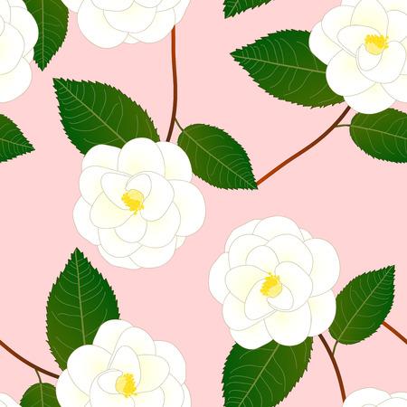 White Camellia Flower on Pink Background. Vector Illustration.