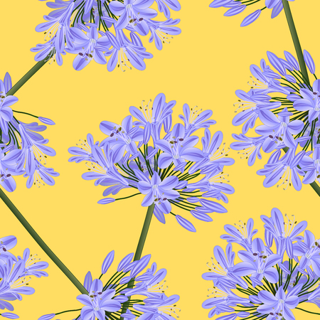 Blue Purple Agapanthus on Yellow Background. Vector Illustration. Illusztráció