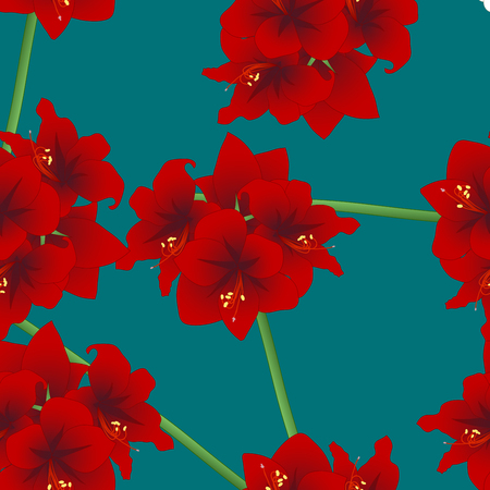 Red Amaryllis on Teal Indigo Background. Christmas Day. Vector Illustration.