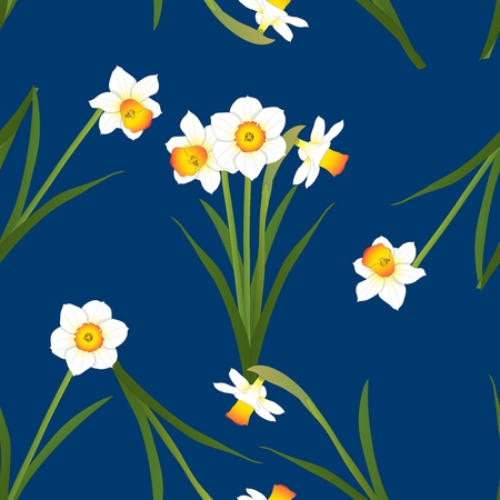 Daffodil - Narcissus on Indigo Blue Background. Vector Illustration.