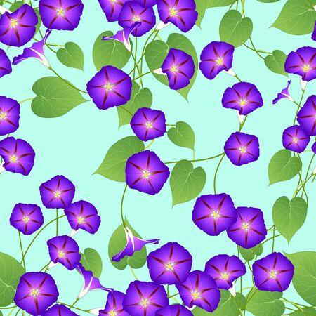Purple Morning Glory on Green Mint Background. Vector Illustration.