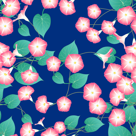 Pink Morning Glory on Blue Indigo Background. Vector Illustration.
