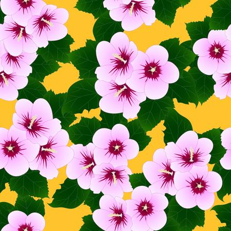 Pink Hibiscus Background Vector Illustration.