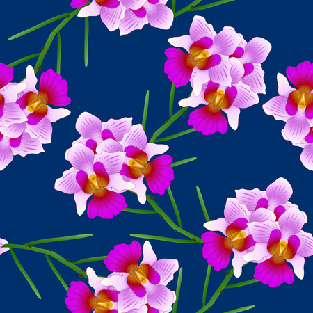 Vanda Miss Joaquim Orchid. Singapore National Flower. on Indigo Blue Background. Vector Illustration.