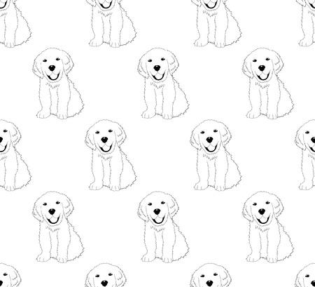 Labrador Golden Retriever modello del cane