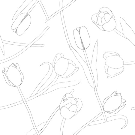 Tulip on White Background. Vector Illustration. Illustration