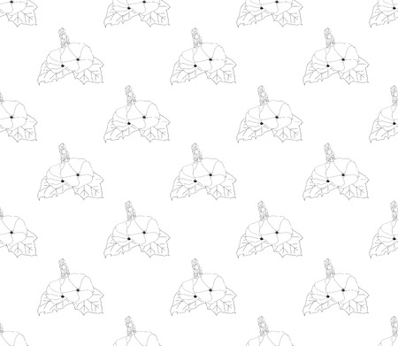 Hollyhock Seamless on White Background. Vector Illustration.